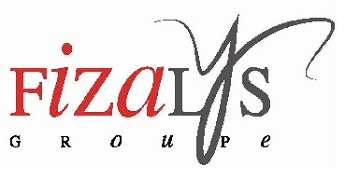 FIZALYS AUDIT Logo
